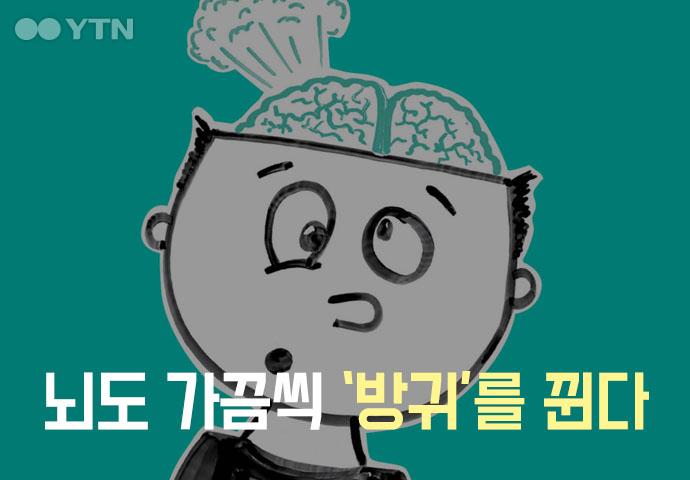 [한컷뉴스] 뇌도 가끔씩 '방귀'를 뀐다