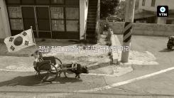 [블박TV] 꼬마 돼지의 섬마을 여행…. 집이 어디니?