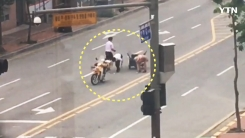 """[영상] 도로에 와르르 쏟아진 요구르트들..""""저희가 도와드릴게요"""""""