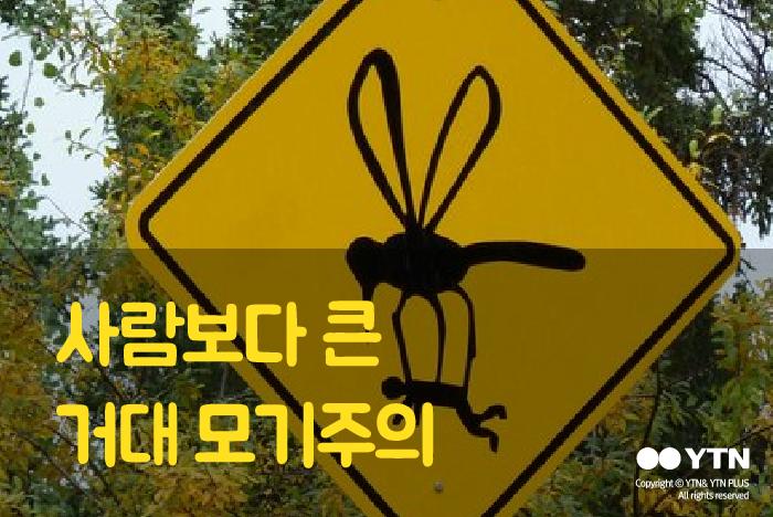 [한컷뉴스] 새야? 모기야?...'사람보다 큰 모기 경고판'