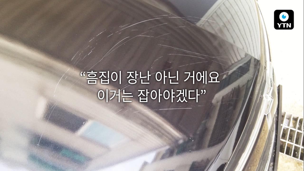 [블박TV] '차 보닛에 날벼락' 삽을 든 범인의 정체