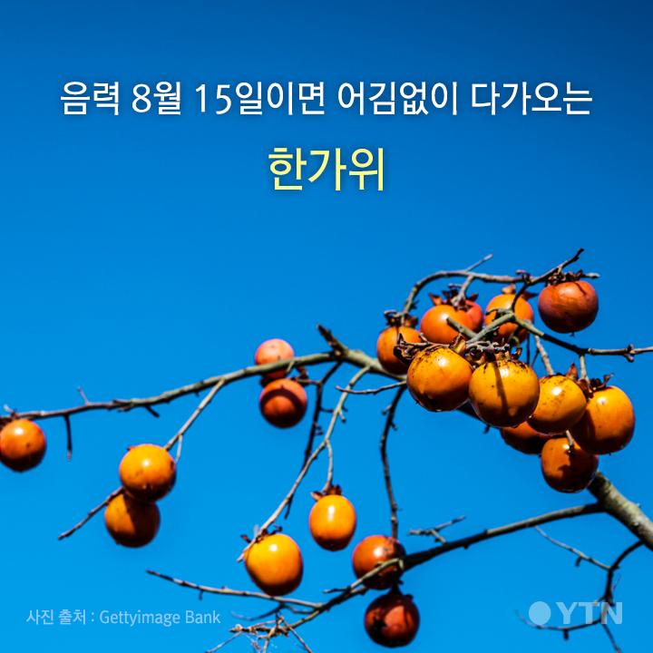 """[한컷뉴스] """"강강~술래~"""" 한가위 화합의 의미를 생각해요"""