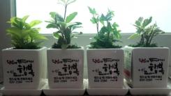 [좋은뉴스] 홀몸 어르신 외로움 달래는 '반려식물'