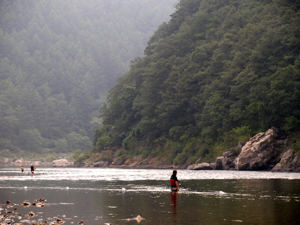 [포토에세이-홍천강] 홍천강 여름풍경