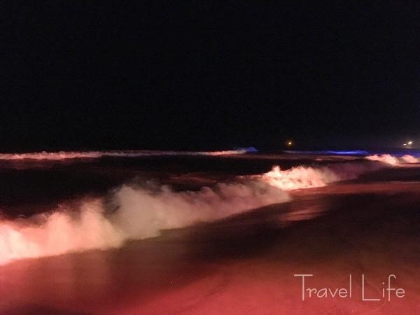 속초 야간 여행, 낭만과 밤바다가 함께