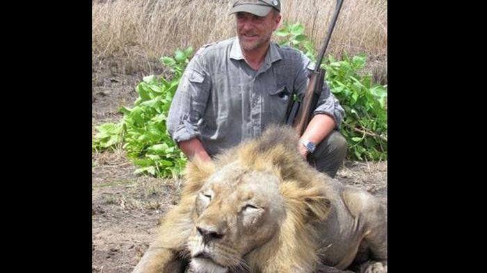야생동물 사냥 즐기던 수의사의 비참한 최후