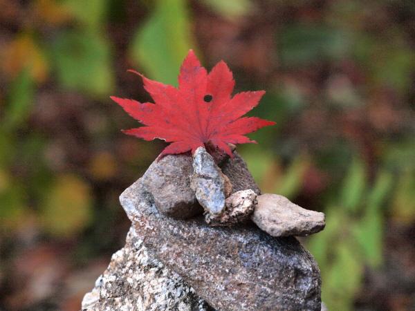 [포토에세이-서리산] 가을 지나 건너뛰고 봄까지