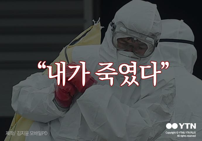 [한컷뉴스] 2,700만 마리 살처분하며 사람도 죽어간다