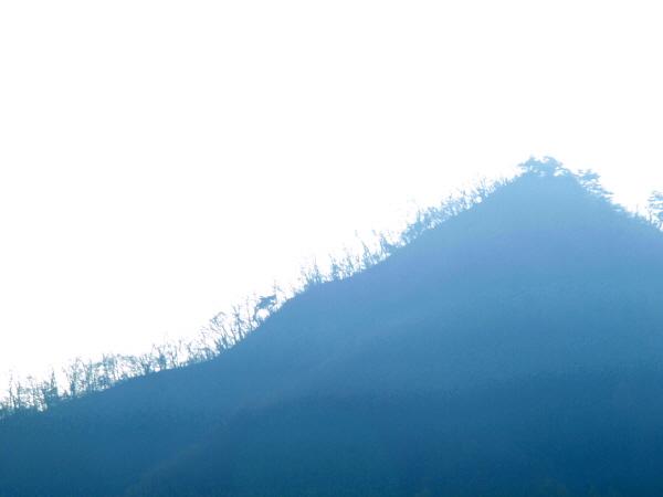 [포토에세이-남양주 조안면] 겨울산