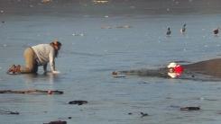 강아지를 구하기 위해 얼음 위를 건너가는 여성