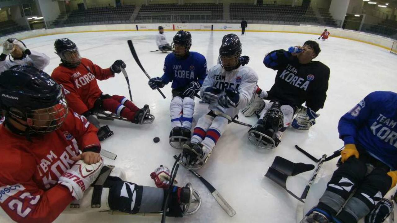 장애인아이스하키 국가대표팀, 토리노 국제 아이스 슬레지 하키 대회 참가