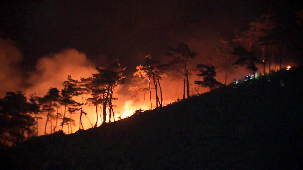 강풍 타고 되살아난 강릉 산불...주민 대피