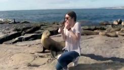 """[지구촌 생생영상] """"나 건드리지 마""""...'버럭' 바다사자"""