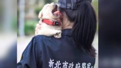 '대만 경찰이 공개한 경찰견'이 주목받는 이유