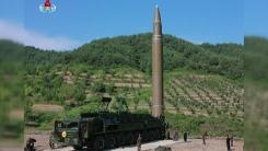 '新 베를린 선언' 앞두고 비상걸린 韓 주도 대북정책