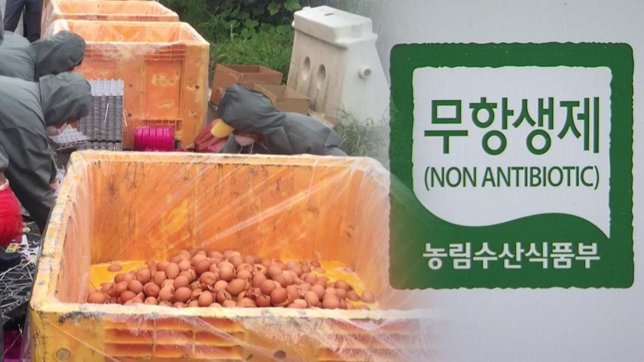 [취재N팩트] 살충제 달걀 농가 31곳 확대...87%가 친환경