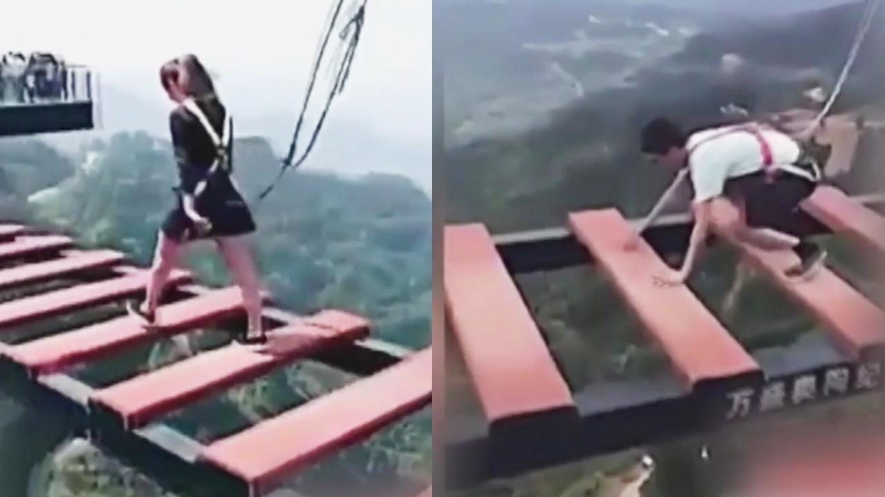 [지구촌생생영상] 담력 체험 극과 극...두 발 걷기 vs 네 발 걷기