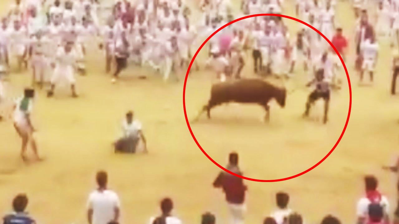 [영상] 성난 황소의 돌진...남성의 놀라운 반응