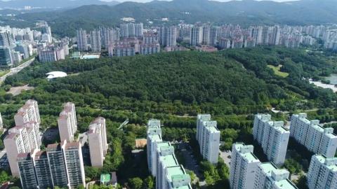 아시아-태평양 국가들, '도시 숲'을  논하다