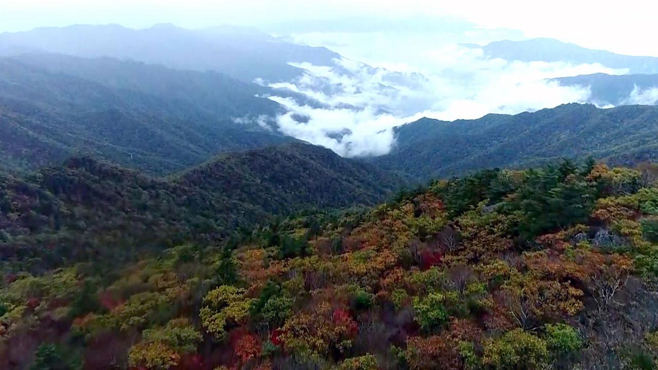 지정 50주년 맞은 1호 국립공원 지리산을 가다