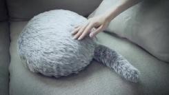 지친 심신을 달래주는 로봇 고양이 '쿠보'