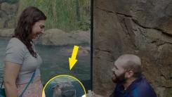동물원에서 프로포즈하는 커플을 본 하마의 표정