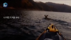 [영상] 호수 위에 떠 다니는 '의문의 물체'