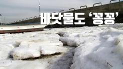 [자막뉴스] 바닷물도 '꽁꽁'...굴·감태 수확 차질 우려