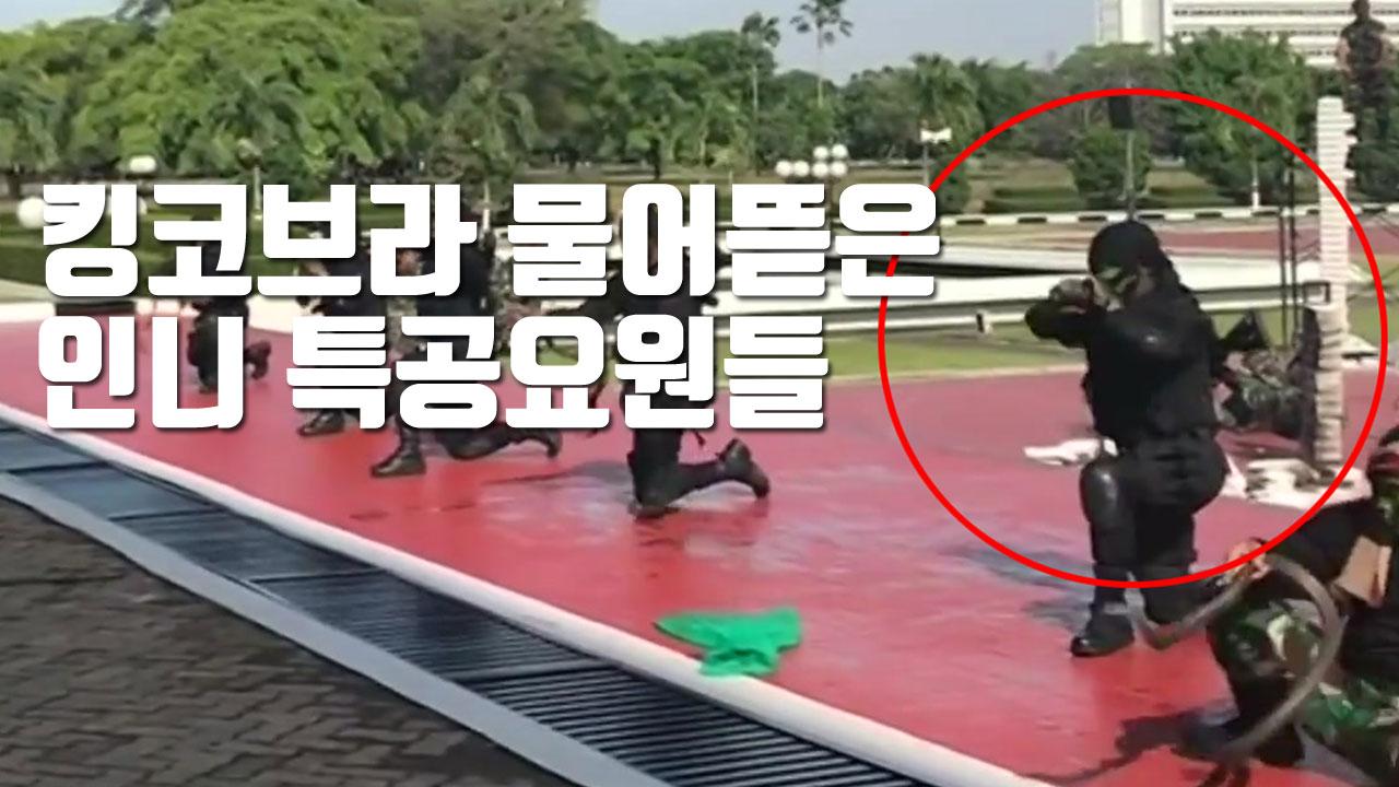 [자막뉴스] 킹코브라 물어뜯은 인니 특공요원들...美 국방장관 '감탄'