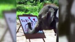 [지구촌생생영상] 4살짜리 코끼리의 놀라운 그림 실력