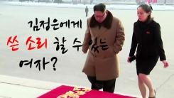 [자막뉴스] '김씨 일가' 첫 방남 김여정, 막후 권력 실세