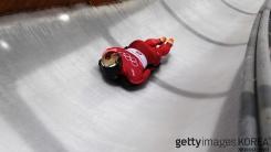 세계 1위 지킨 윤성빈, 세계 1위 꺾은 女 컬링