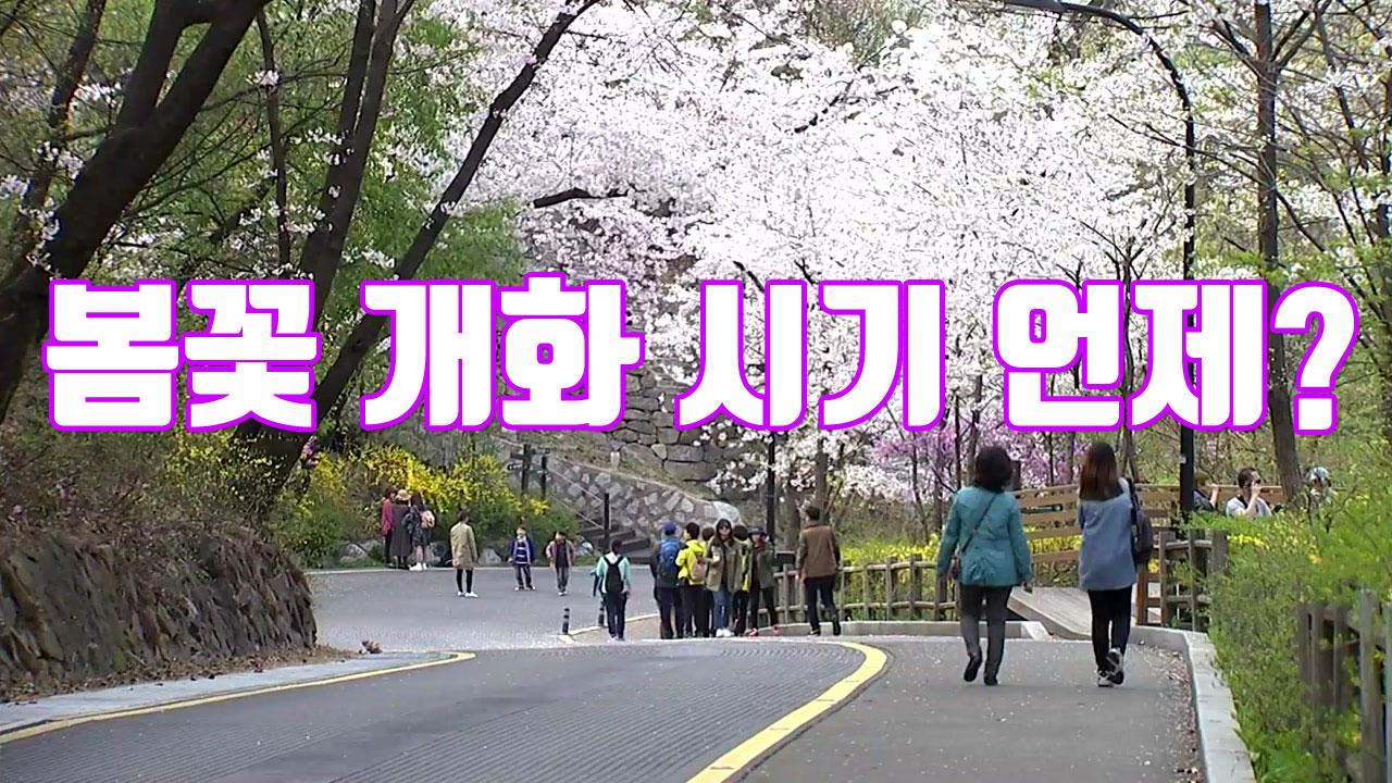 [자막뉴스] 지역별 봄꽃 개화 시기 알려드릴게요!