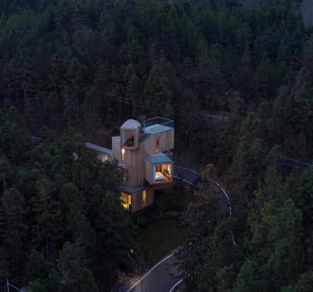 〔안정원의 건축 칼럼〕 삼나무 숲으로의 전망을 최대치로 이끌어낸 이색적인 집 1