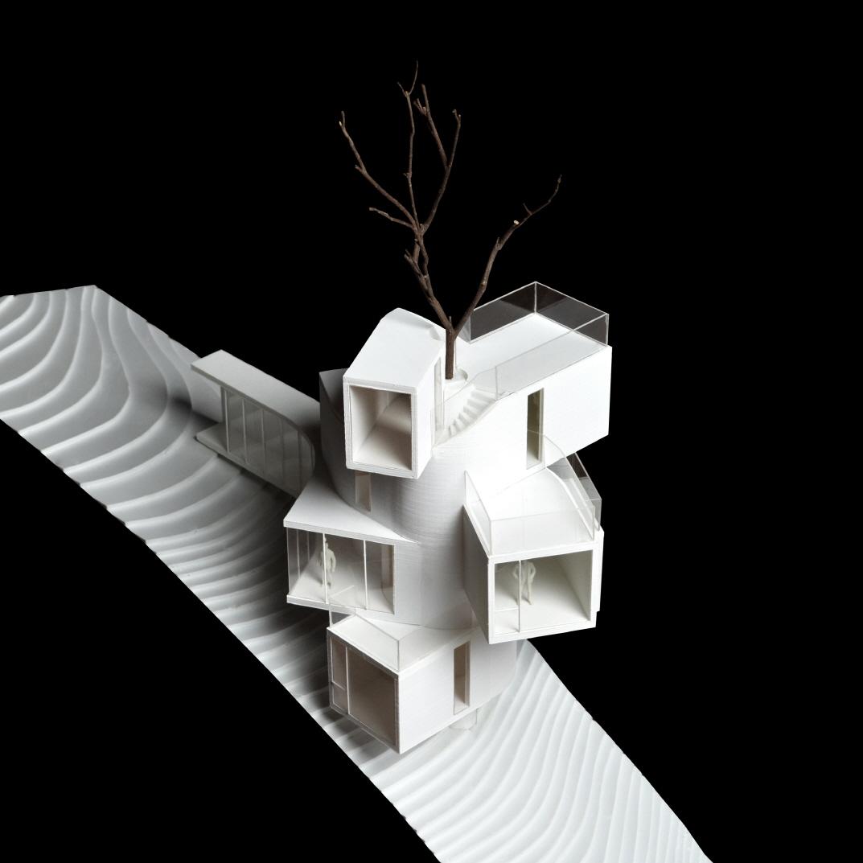 〔안정원의 건축 칼럼〕 삼나무 숲으로의 전망을 최대치로 이끌어낸 이색적인 집 2