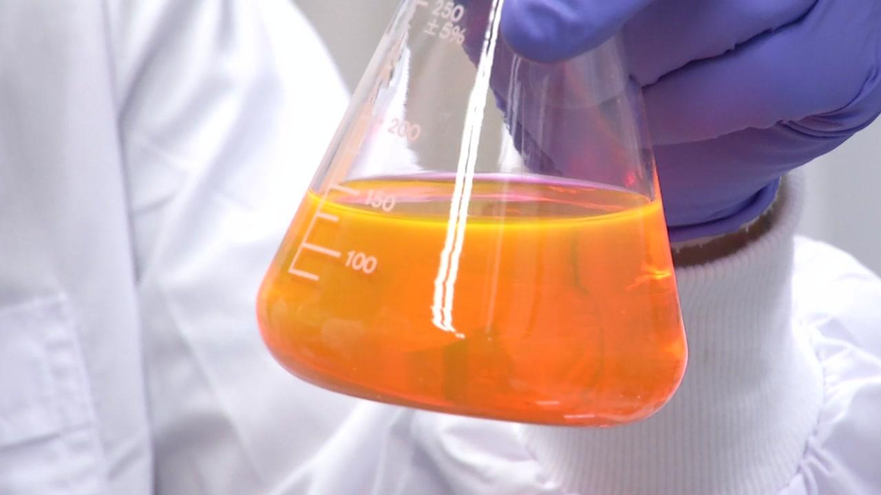 젊은 과학자 연구비 갈증 푼다...'생애 첫 연구' 주목