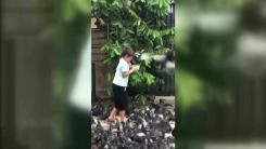 [지구촌생생영상] 비둘기 모이 주다 봉변당한 소년