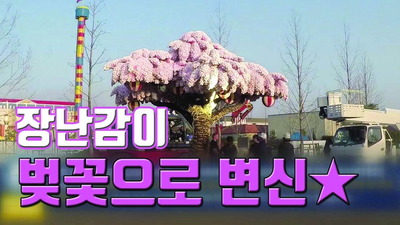 [자막뉴스] 장난감 88만 개로 만든 '세계에서 가장 큰 벚꽃 나무'