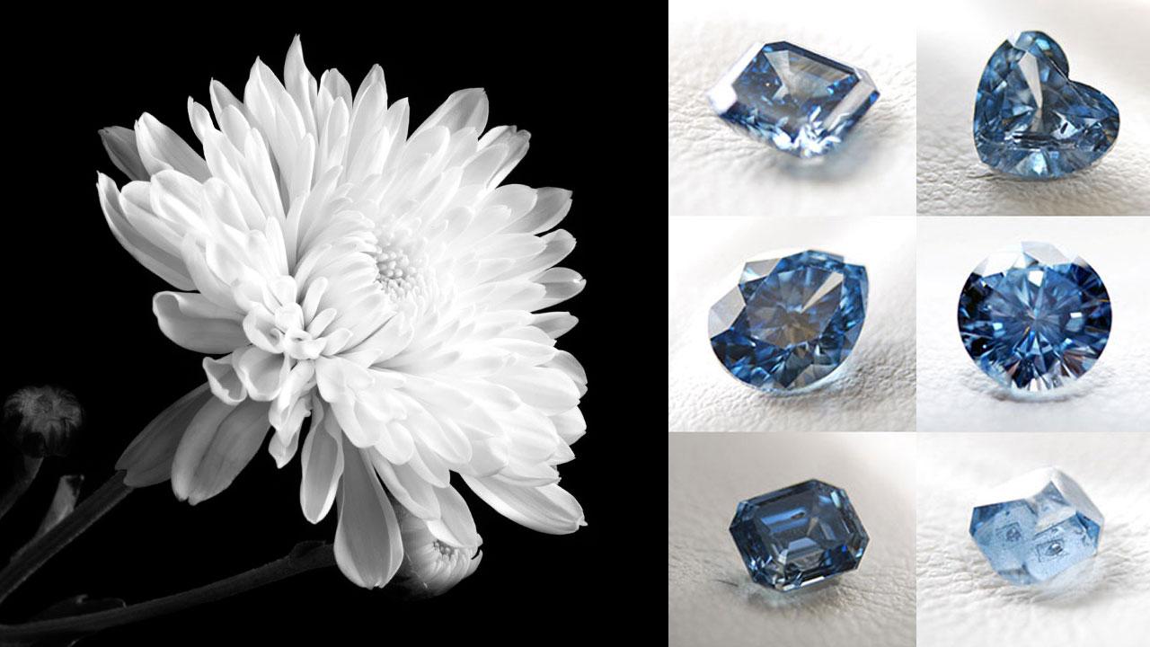 장례 속 첨단 과학...죽어서 다이아몬드를 남기다!