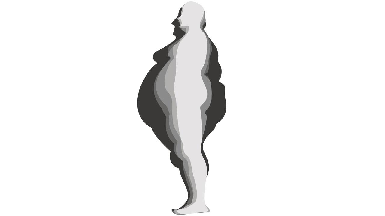 """""""과체중→비만 전 단계"""" 비만 진단기준 변경"""