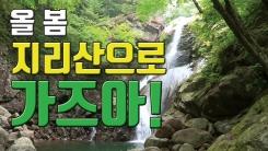 [자막뉴스] '아무 때나 못 가요' 지리산 원시림 내달 개방