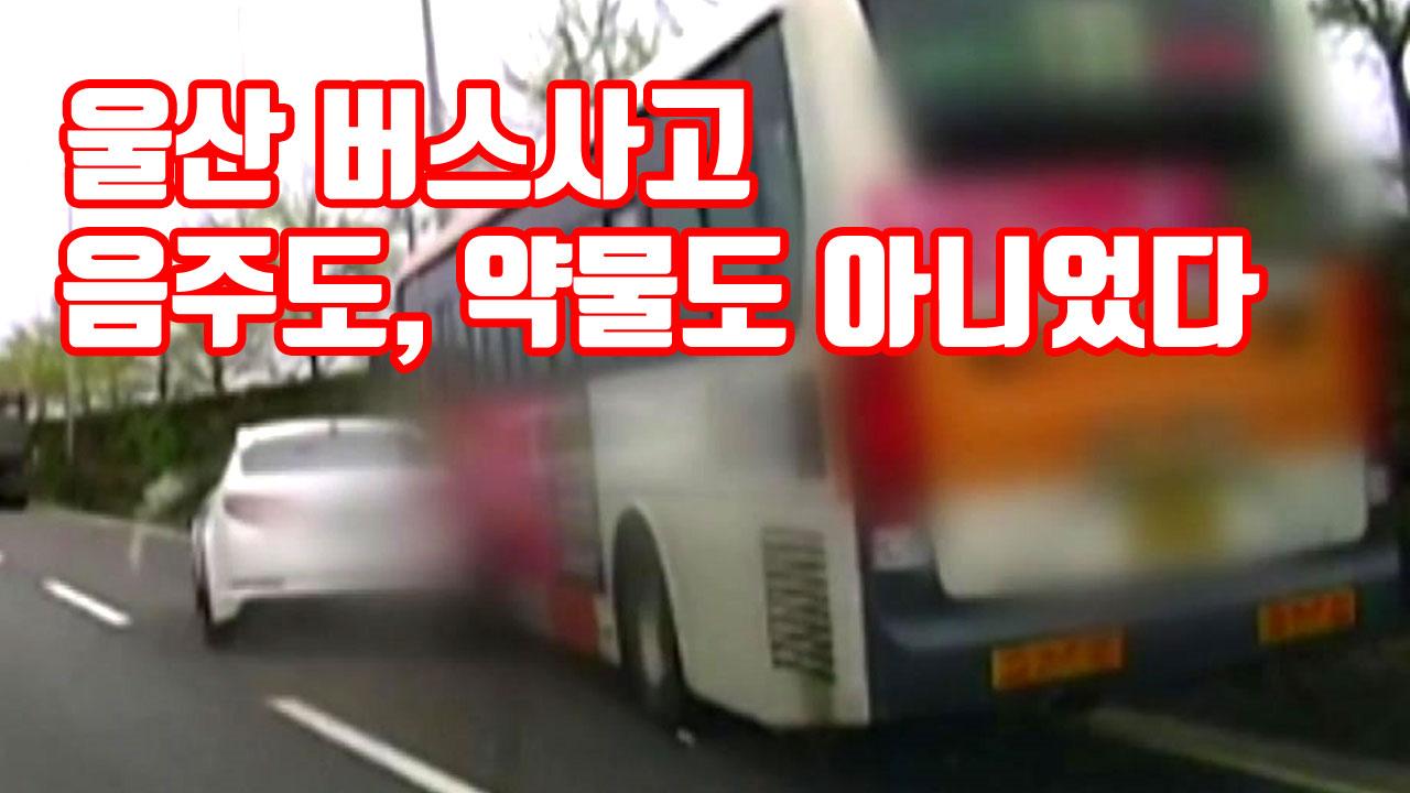 [자막뉴스] '울산 버스사고' 음주도, 약물도 아니었다