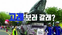 [자막뉴스] 직접 가봤습니다 #장생포고래특구