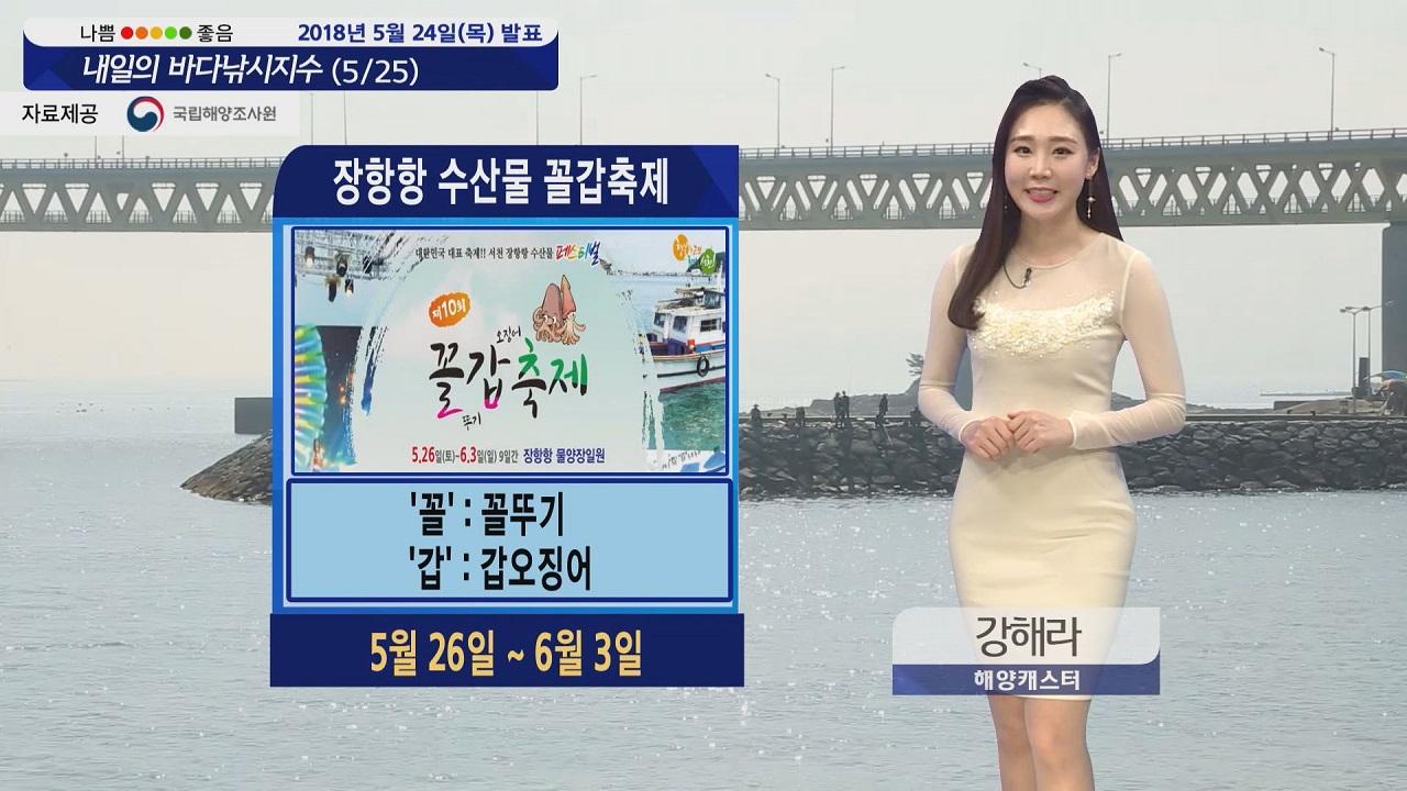 [내일의 바다낚시지수] 5월25일 바람 강한 울산 제외 전국적으로 출조하기 안성맞춤