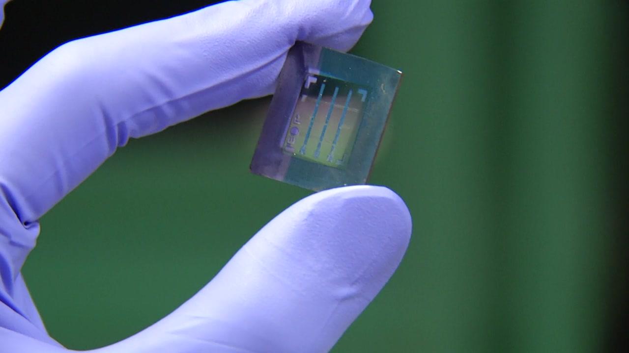 USB를 몸에 심는다?...'포도당' 활용한 메모리 개발