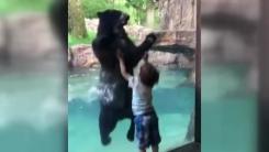 5살 아이 따라 '폴짝폴짝' 뛰는 흑곰