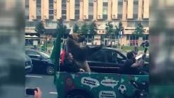월드컵 축하 행진서 부부젤라 부는 곰...'학대 논란'