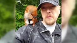 [영상] 목줄하고 산책하는 다람쥐 '틴틴'