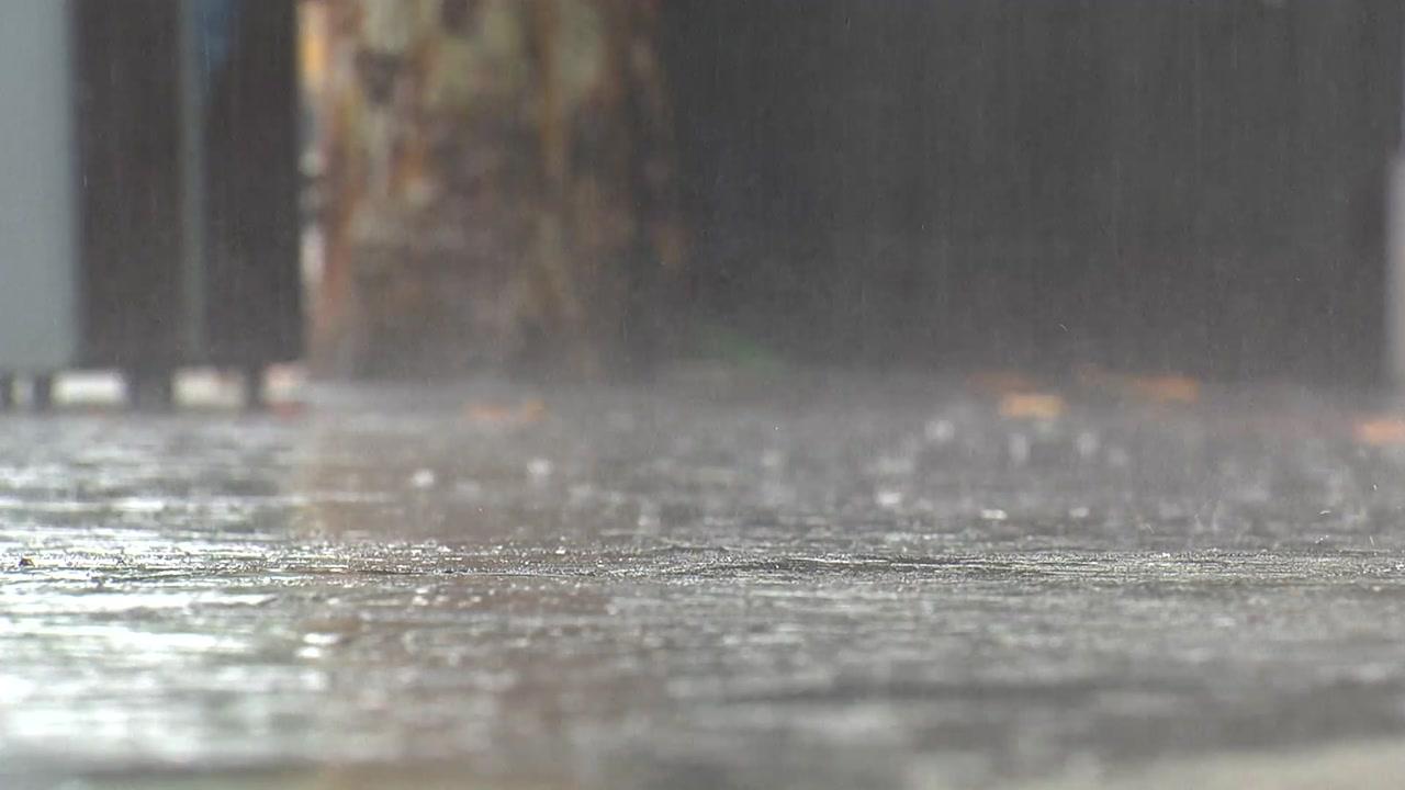 [날씨] 장마전선 밤사이 남부로...게릴라 호우 쏟아진다