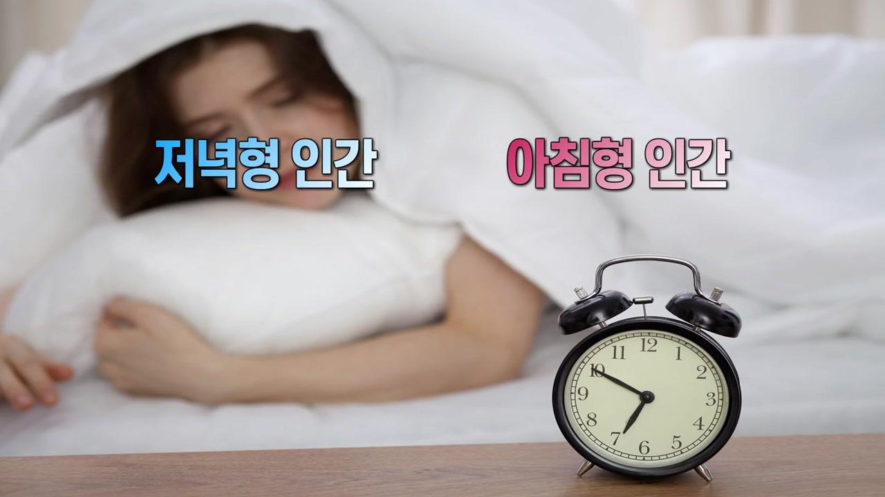 아침형 인간 vs. 저녁형 인간...누가 더 건강할까?